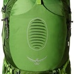 Osprey Men's Atmos 65 AG Backpacks, Absinthe Green, Small