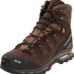 Salomon Men's Quest 4D GTX Backpacking Boot,Absolute Brown-X/Burro/Wood Beige,12 M US